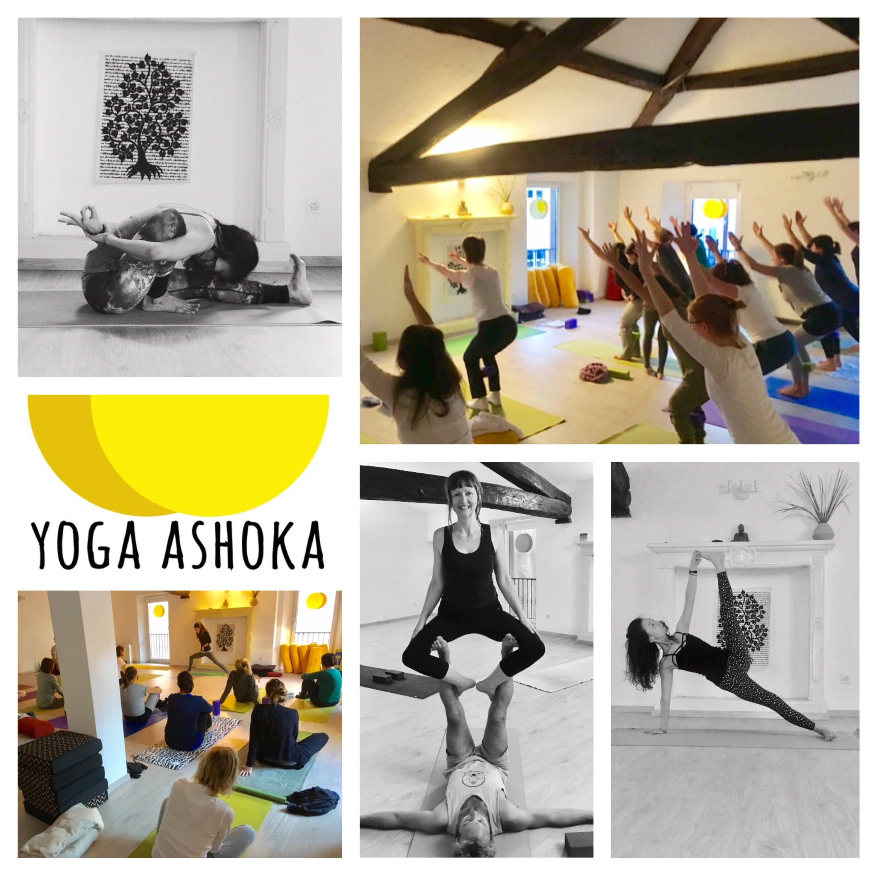 collage yoga ashoka